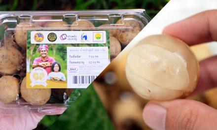 รีวิว ลองกองสานพลังประชารัฐ ความอร่อยจาก 3 จังหวัดชายแดนภาคใต้